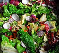 composting food